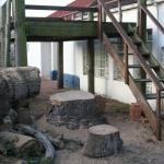 Plot and Bush Cleaning Port Elizabeth